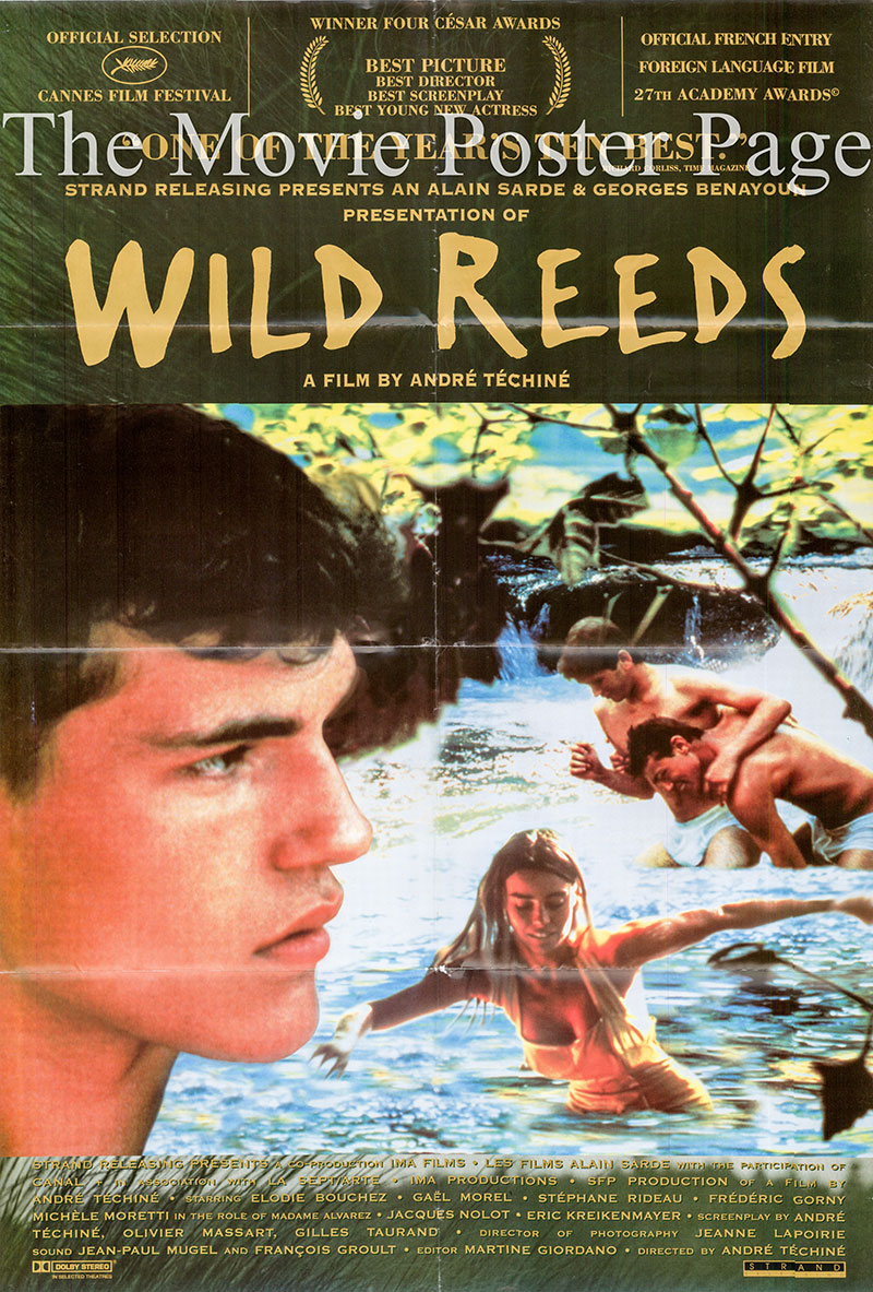 The image shows a one-sheet awards promotional poster for the 1995 Andre Techine film Wild Reeds, starring Elodie Bouchez.