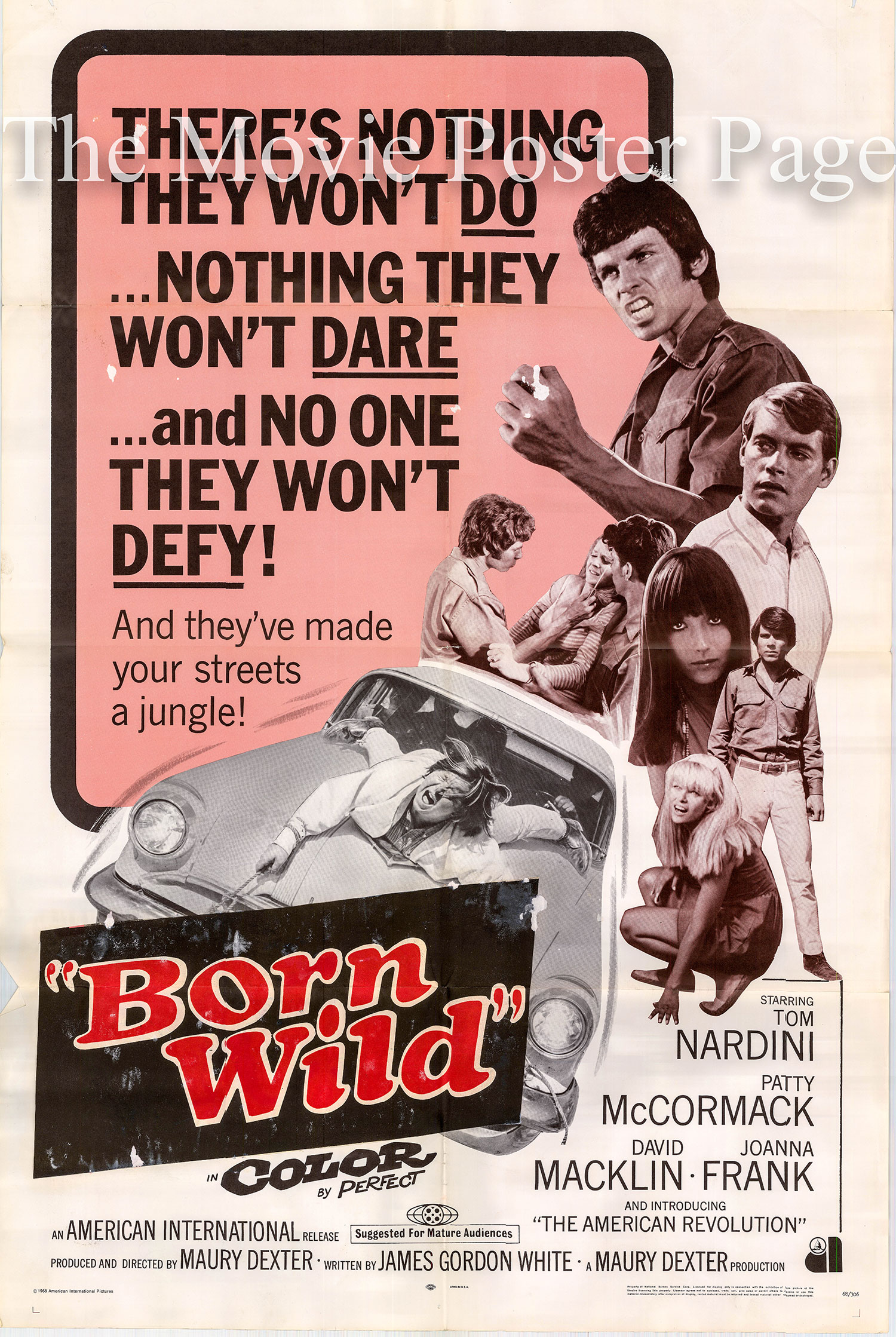 Pictured is the US one-sheet promotional poster for the 1968 Maury Dexter film Born Wild, starring Tom Nardini.