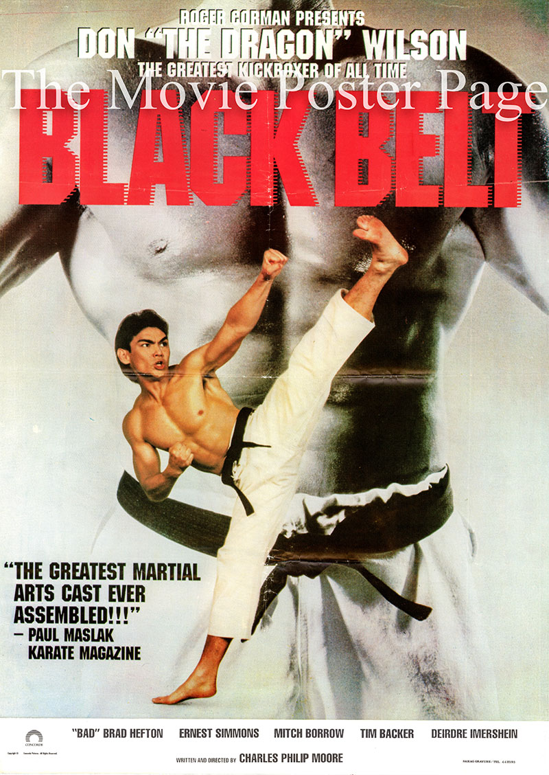 Pictured is a Lebanese promotional poster for the 1992 Charles Philip Moore and Rick Jacobson film Black Belt starring Don Wilson.