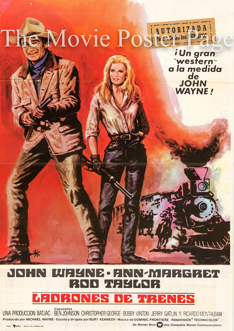Pictured is a Spanish one-sheet poster for the 1973 Burt Kennedy film The Train Robbers starring John Wayne as Lane.