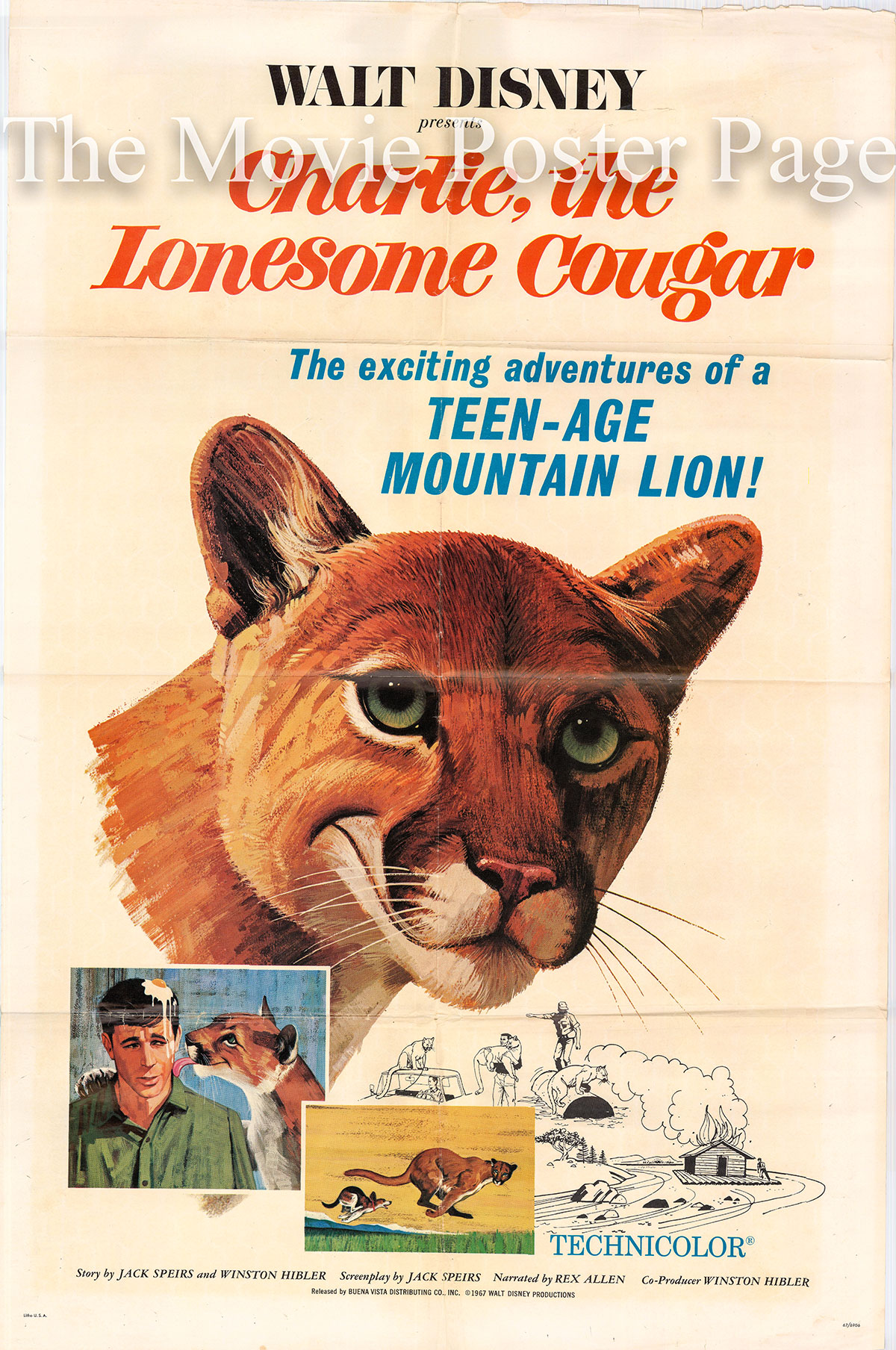 Pictured is a US one-sheet promotional poster for the 1967 Jack Spiers film Charlie the Lonesome Cougar narrated by Rex Allen .