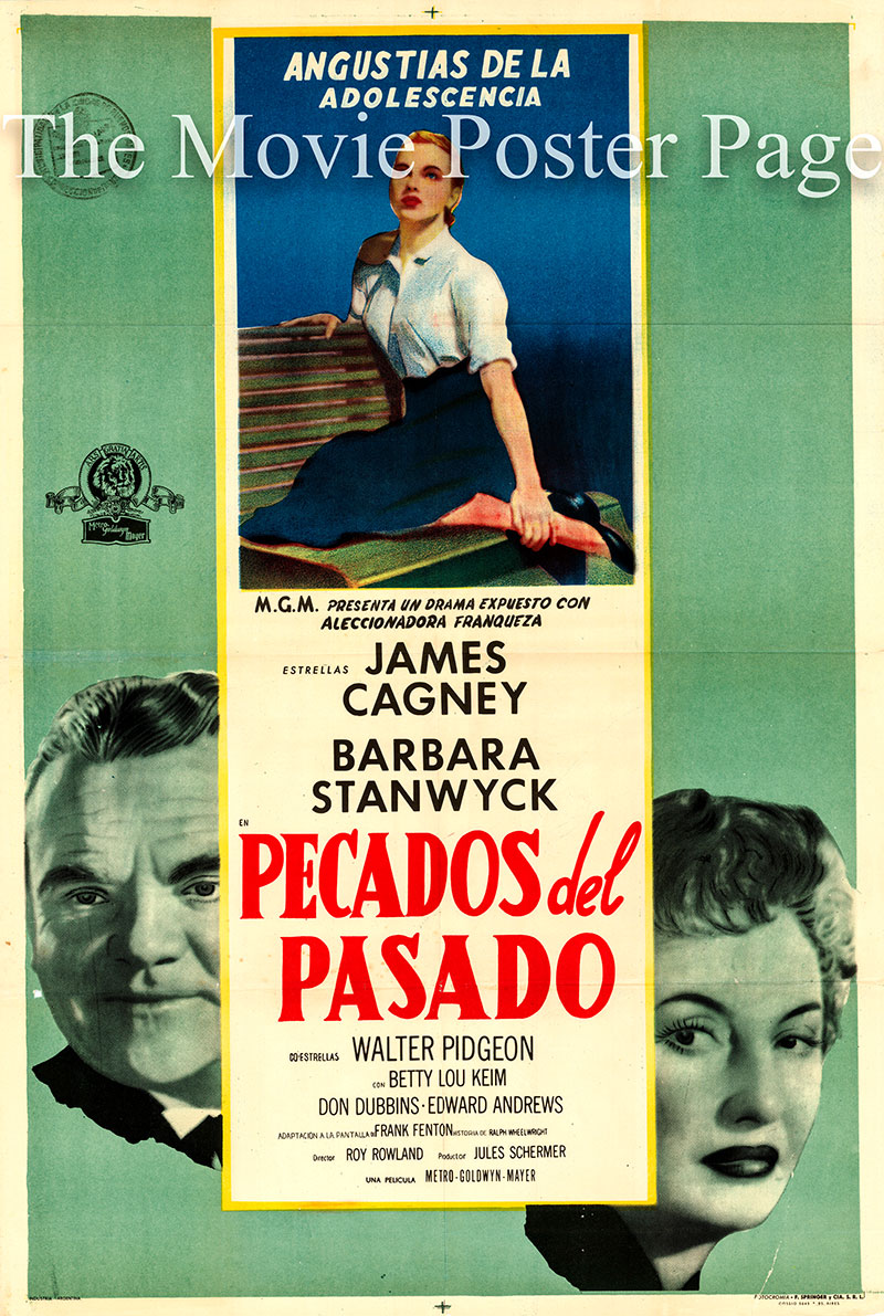 Pictured is an Argentine promotional poster for the 1956 Roy Rowland film These Wilder Years starring James Cagney and Barbara Stanwyck.