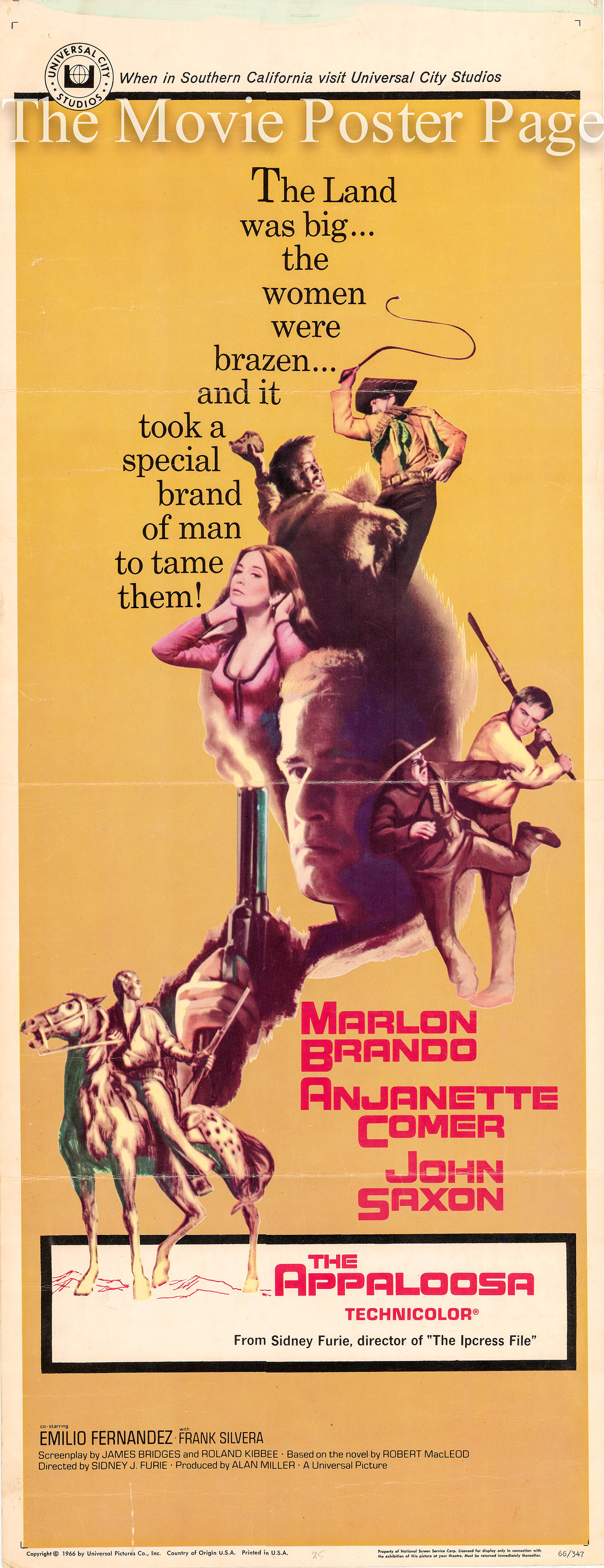 Pictured is a US insert poster for the 1966 Sidney J. Furie film Appaloosa starring Marlon Brando.