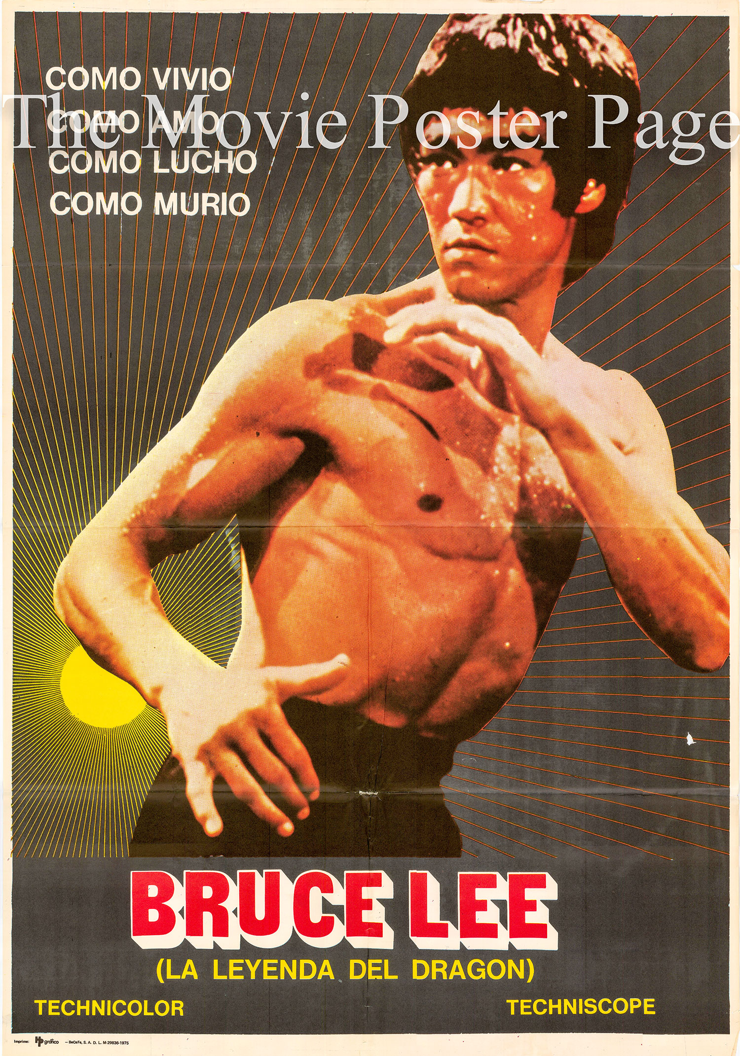 Pictured is a Spanish one-sheet poster for the 1976 See-Yuen Ng film Bruce Lee: The Man, the Myth starring David Chow.