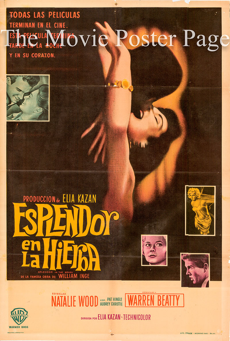 Pictured is an Argentine one-sheet poster for the 1961 Elia Kazan film Splendor in the Grass starring Warren Beatty.