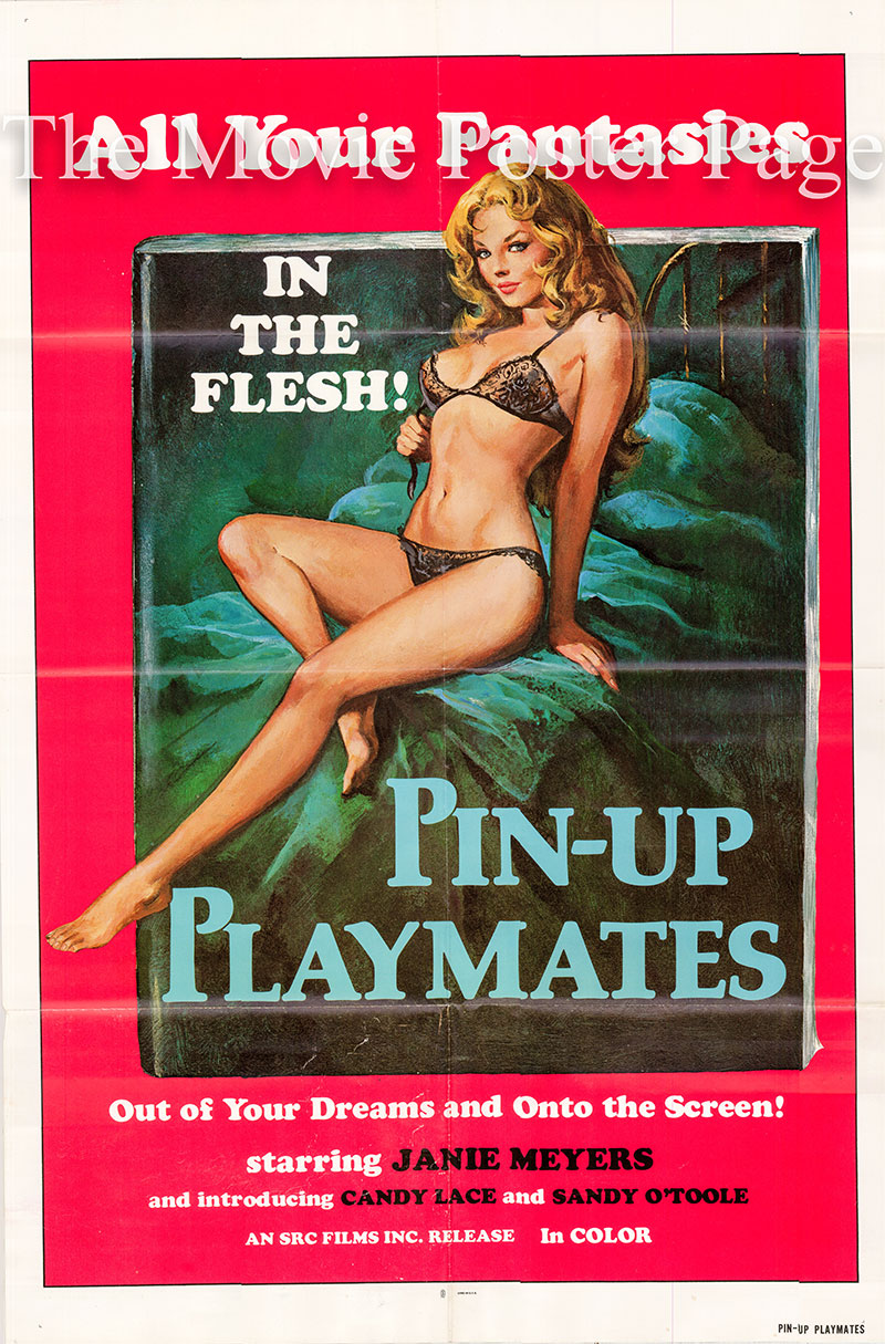 Pictured is a US one-sheet poster for the 1972 Erwin C. Dietrich film Pin-Up Playmates starring Janie Meyers.