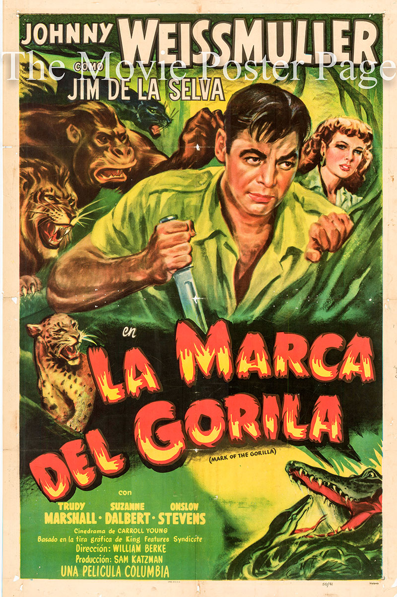 Pictured is a US-made Spanish one-sheet poster for the 1950 William Berke film Mark of the Gorilla starring Johnny Weissmuller as Jungle Jim.