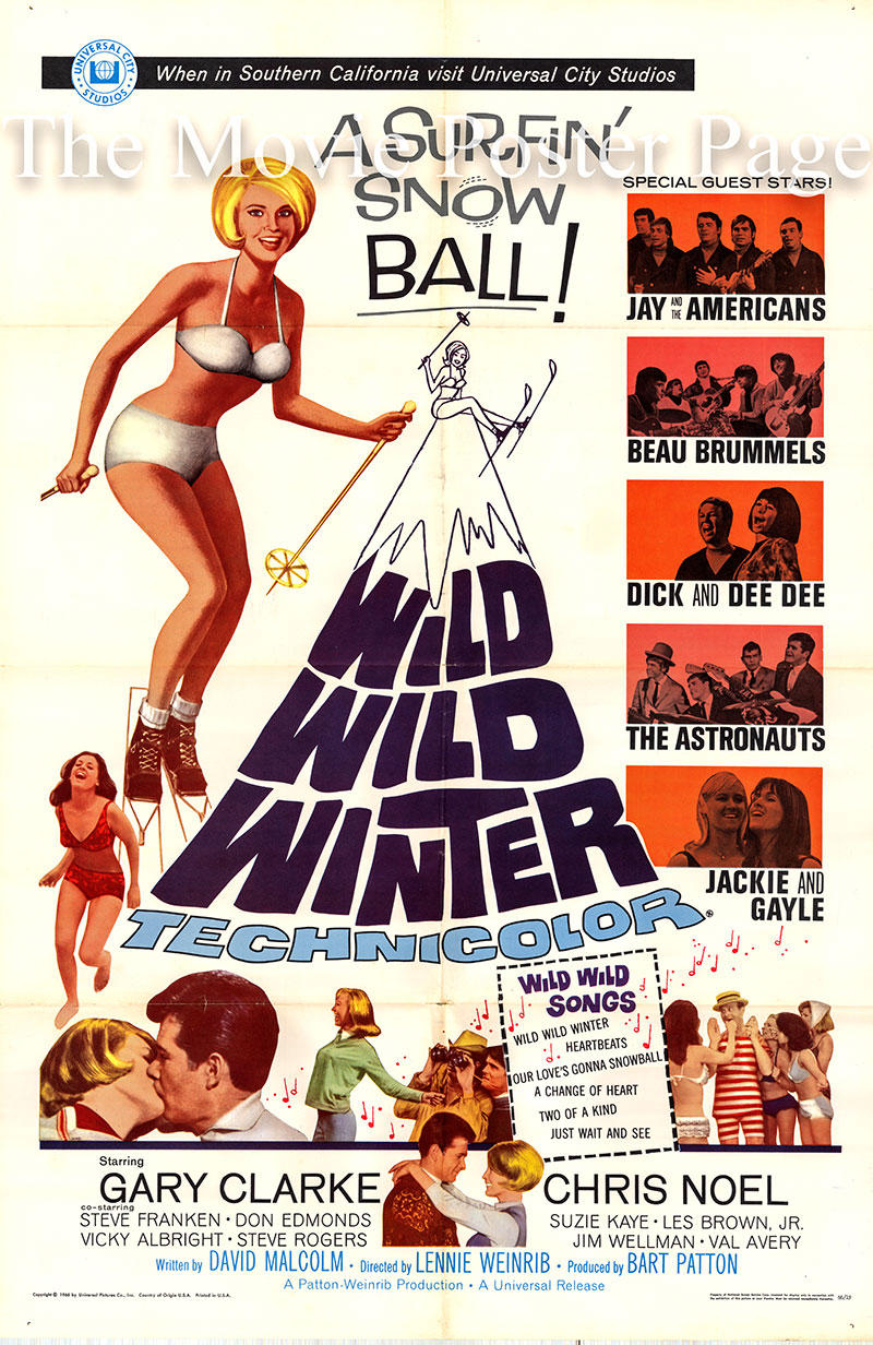 Pictured is a US one-sheet poster for the 1966 Lennie Weinrib film Wild Wild Winter starring Chris Noel as Susan.