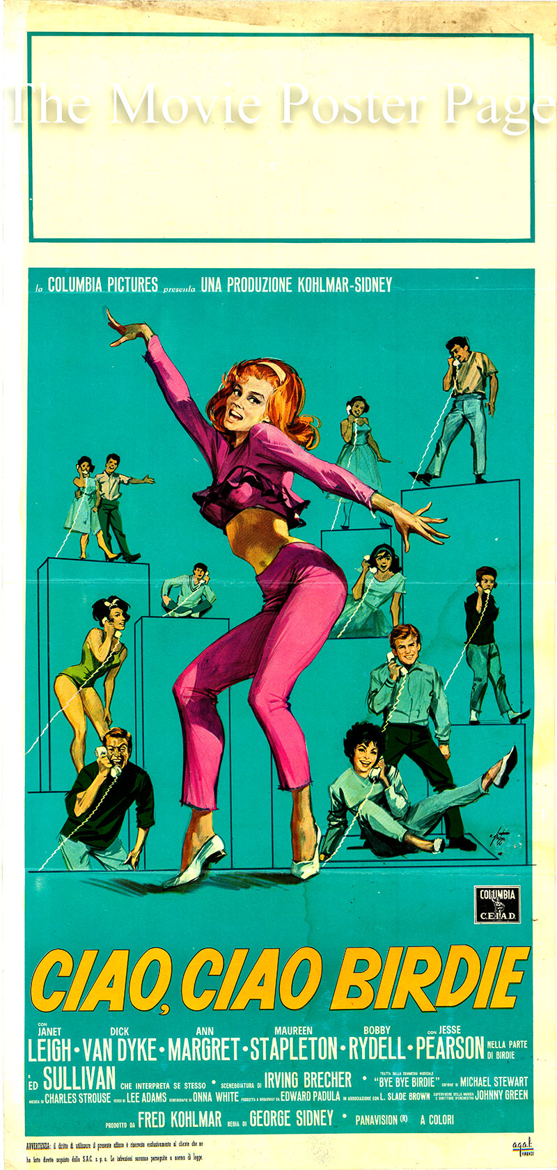 Pictured is an Italian locandina poster for the 1963 George Sidney film Bye Bye Birdie starring Ann-Margret as Kim McAfee.
