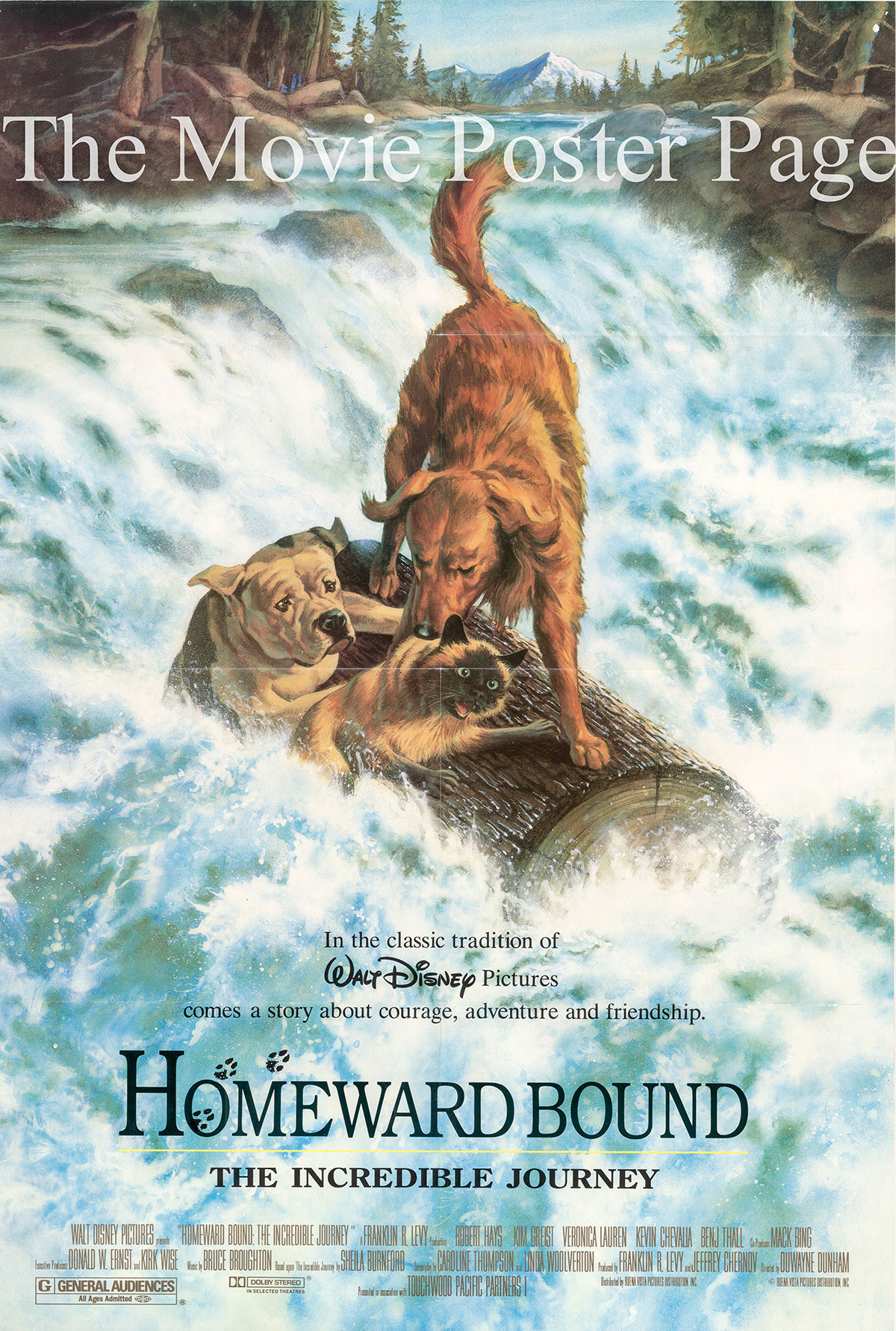 Pictured is the US promotional one-sheet for the 1994 Duwayne Dunham film Homeward Bound, starring Robert Hays.