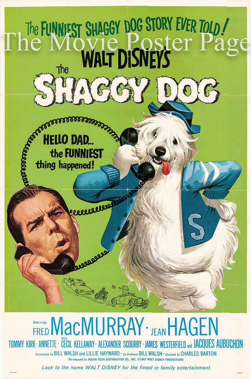 Pictured is a US one-sheet poster for a 1967 rerelease of the 1959 Charles Barton film The Shaggy Dog starring Fred McMurray as Wilson Daniels.