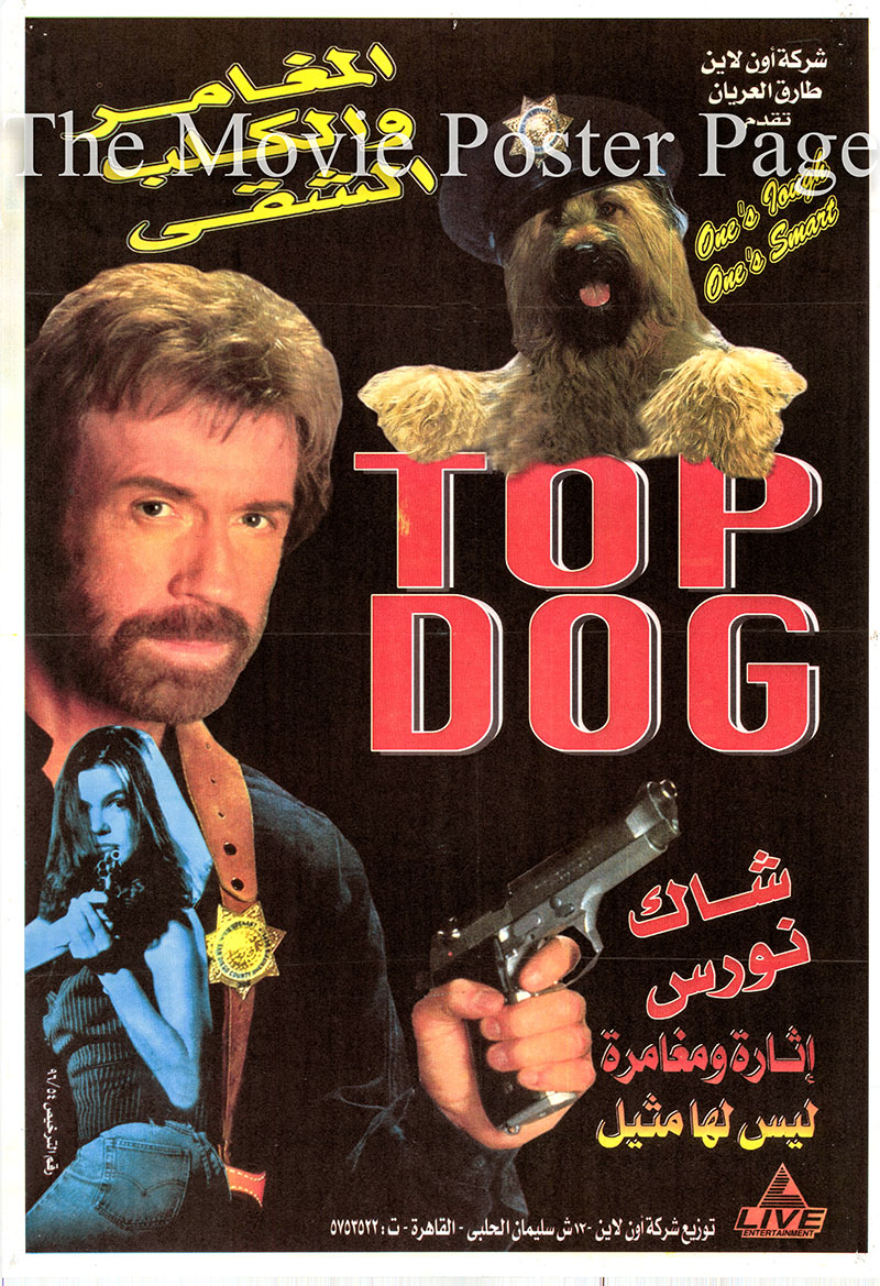 Pictured is an Egyptian promotional poster for a 1996 video rerelease of the 1995 Aaron Norris film Top Dog, starring Chuck Norris.