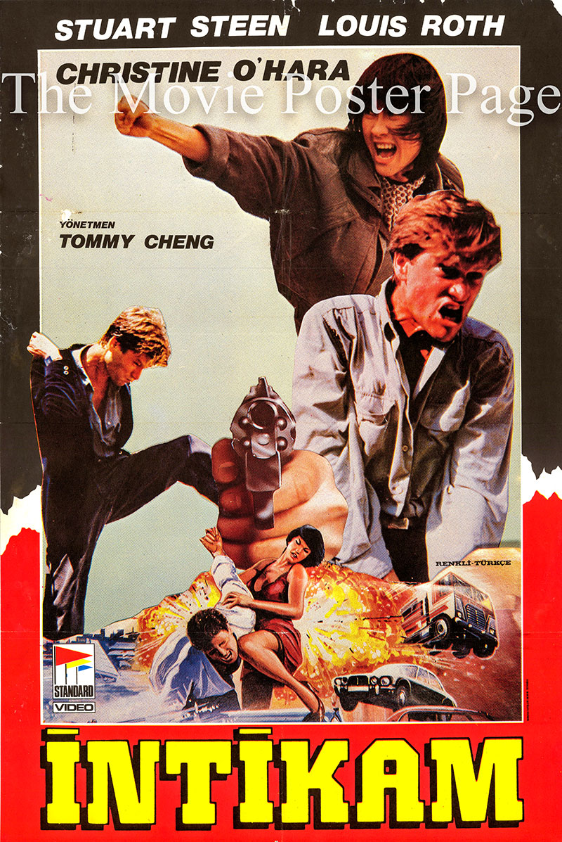 Pictured is a Turkish promotional poster for the 1987 Godfrey Ho film Ninja in Action, starring Stuart Steen.