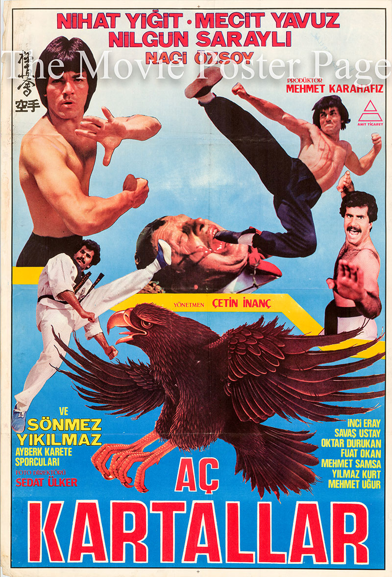 Pictured is a Turkish one-sheet promoational poster for the 1984 Cetin Inanc film Ac Kartallar starring Inci Eray.