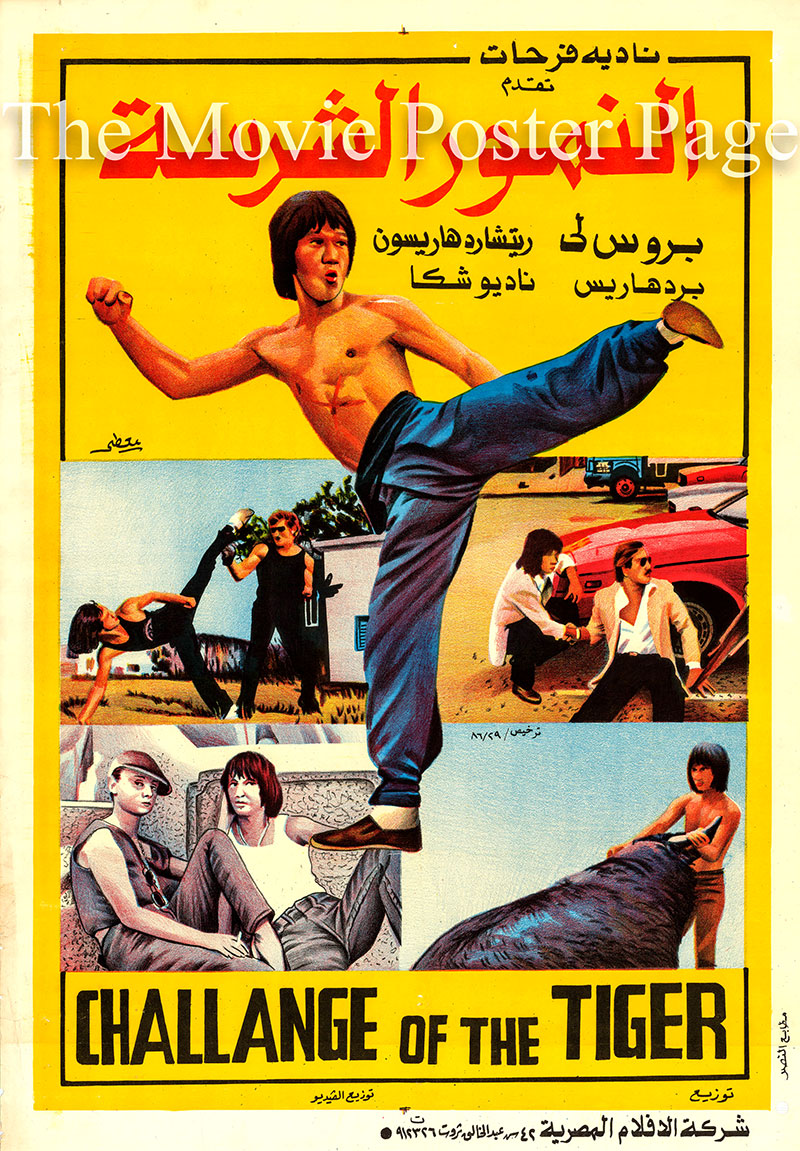 Pictured is an Egyptian promotional poster for the 1980 Bruce Le film Challenge of the Tiger, starring Bruce Le.