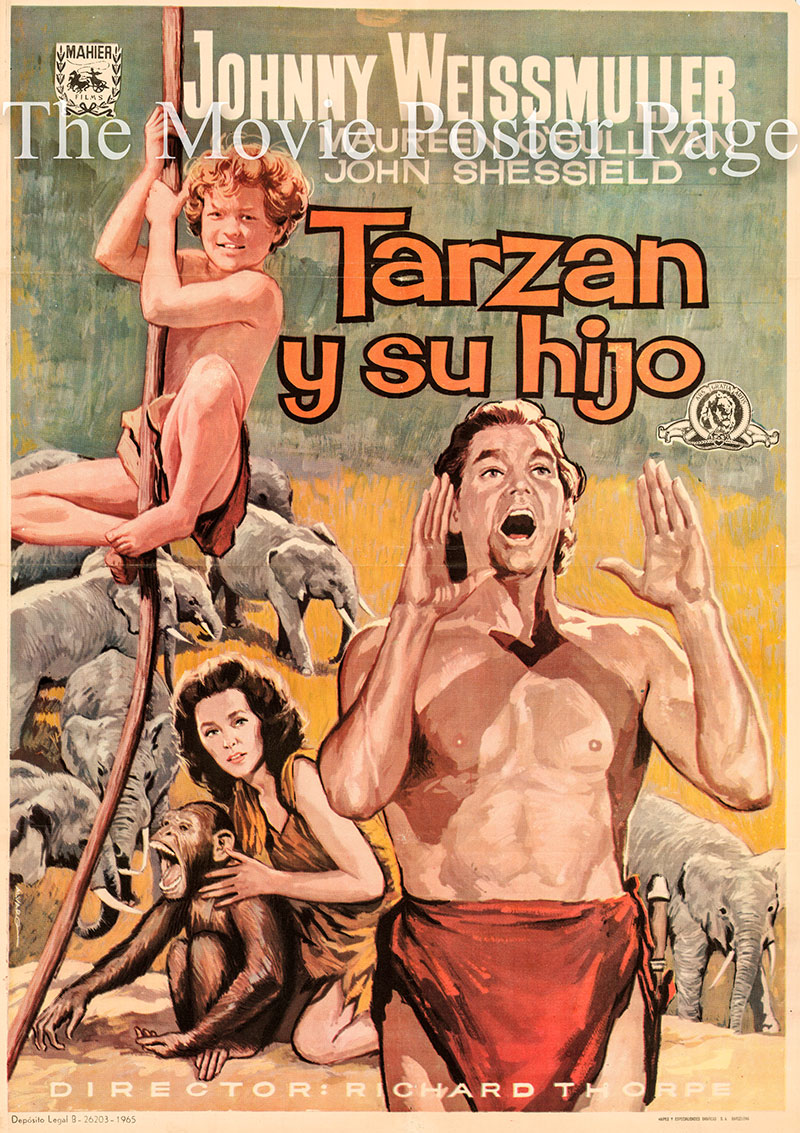 Pictured is a Spanish poster for a 1969 rerelease of the 1939 Richard Thorpe film Tarzan Finds a Son starring Johnny Weissmuller as Tarzan.