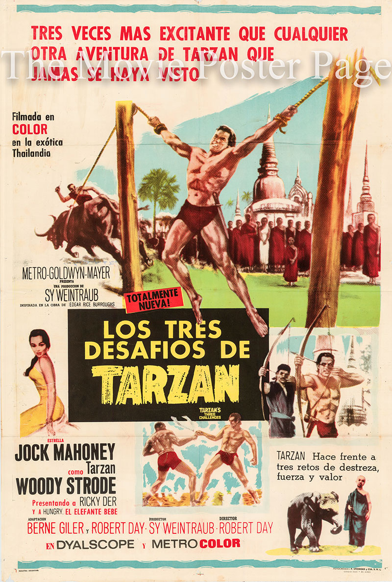 Pictured is an Argentine one-sheet poster for the 1963 Robert Day film Tarzan's Three Challenges starring Jock Mahoney as Tarzan.