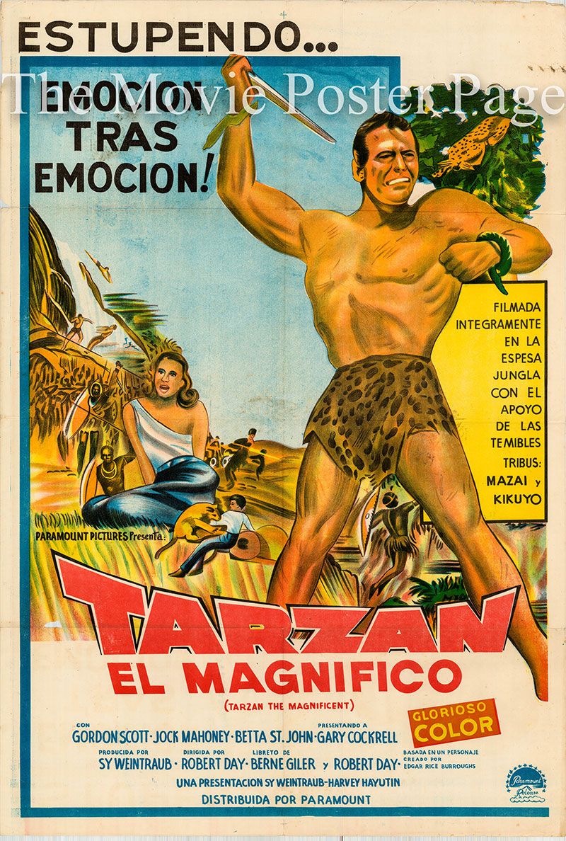 Pictured is an Argentine one-sheet poster for the 1960 Robert Day film Tarzan the Magnificient starring Gordon Scott as Tarzan.
