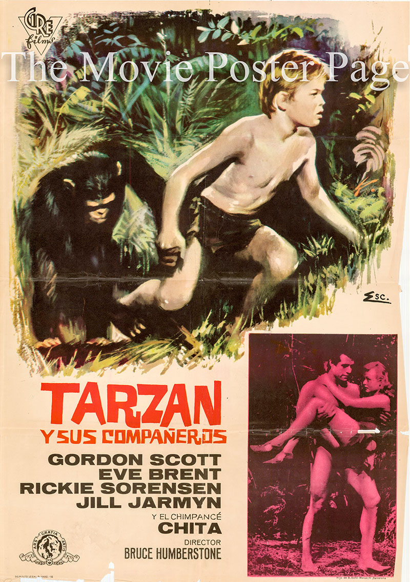Pictured is a Spanish one-sheet poster for a 1967 rerelease of the 1958 Charles F. Haas film Tarzan and the Trappers starring Gordon Scott as Tarzan.