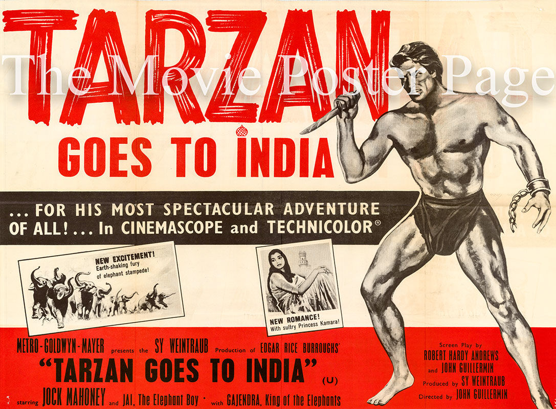 Pictured is a UK quad poster for the 1962 John Guillermin film Tarzan Goes to India starring Jock Mahoney as Tarzan.