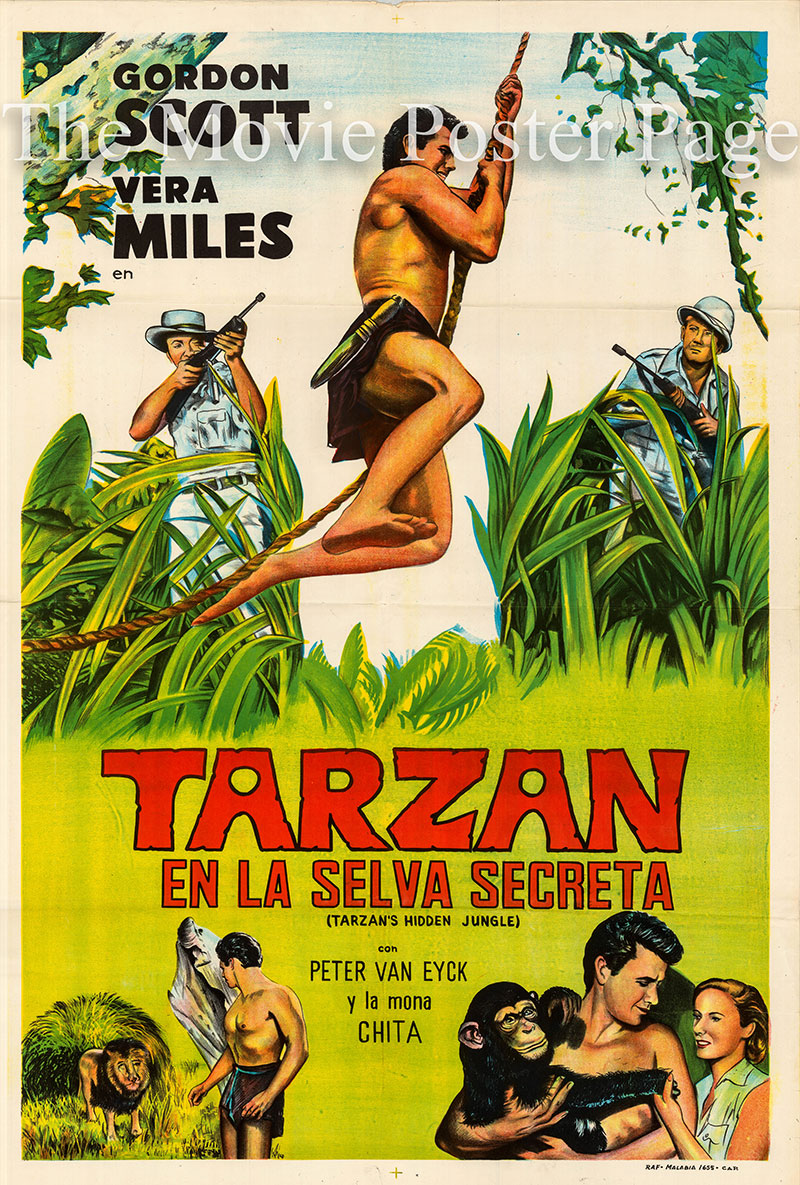 Pictured is an Argentine one-sheet poster for a 1976 rerelease of the 1955 Harold D. Schuster film Tarzan's Hidden Jungle starring Gordon Scott as Tarzan.