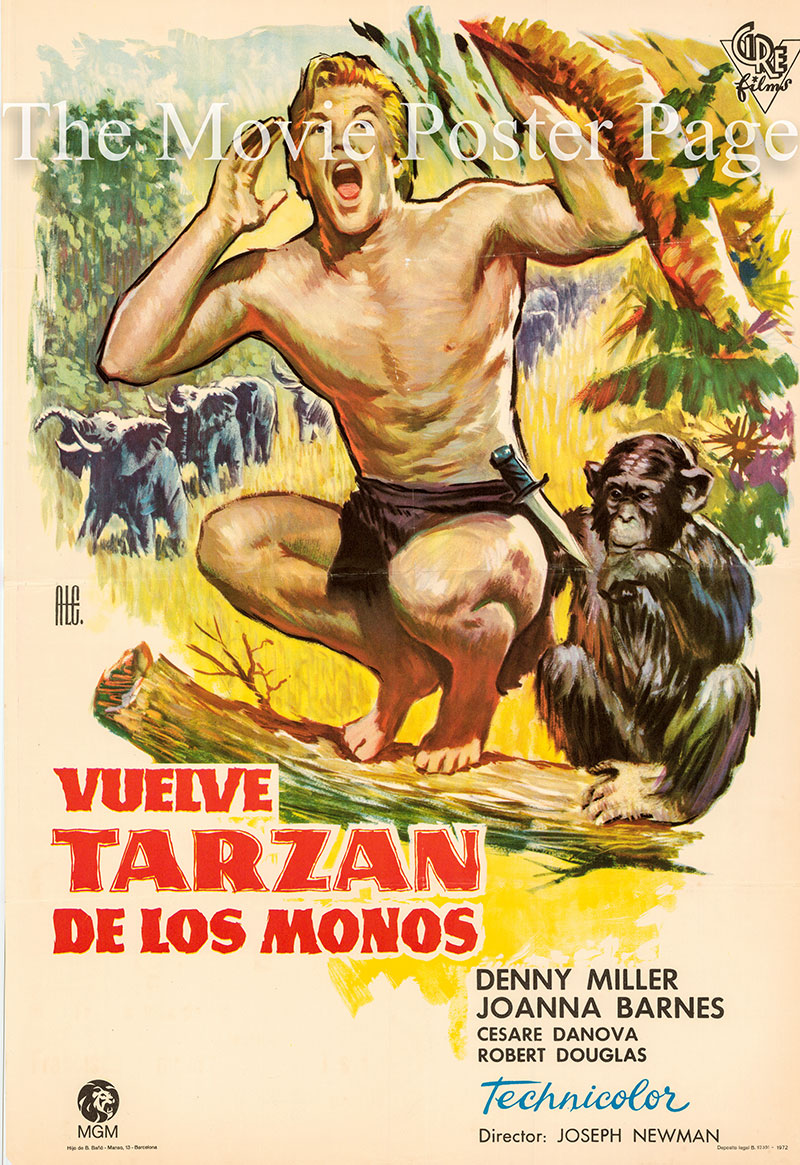 Pictured is a Spanish one-sheet poster for a 1972 rerelease of the 1959 Joseph M. Newman film Tarzan, the Ape Man starring Denny Miller as Tarzan.