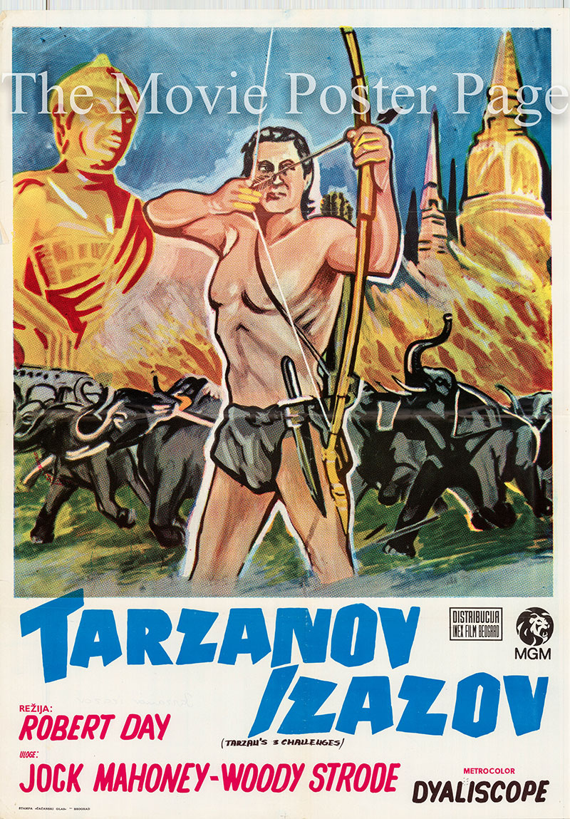 Pictured is a Yugoslavian poster for a 1970s rerelease of the 1963 Robert Day film Tarzan's Three Challenges starring Jock Mahoney as Tarzan.