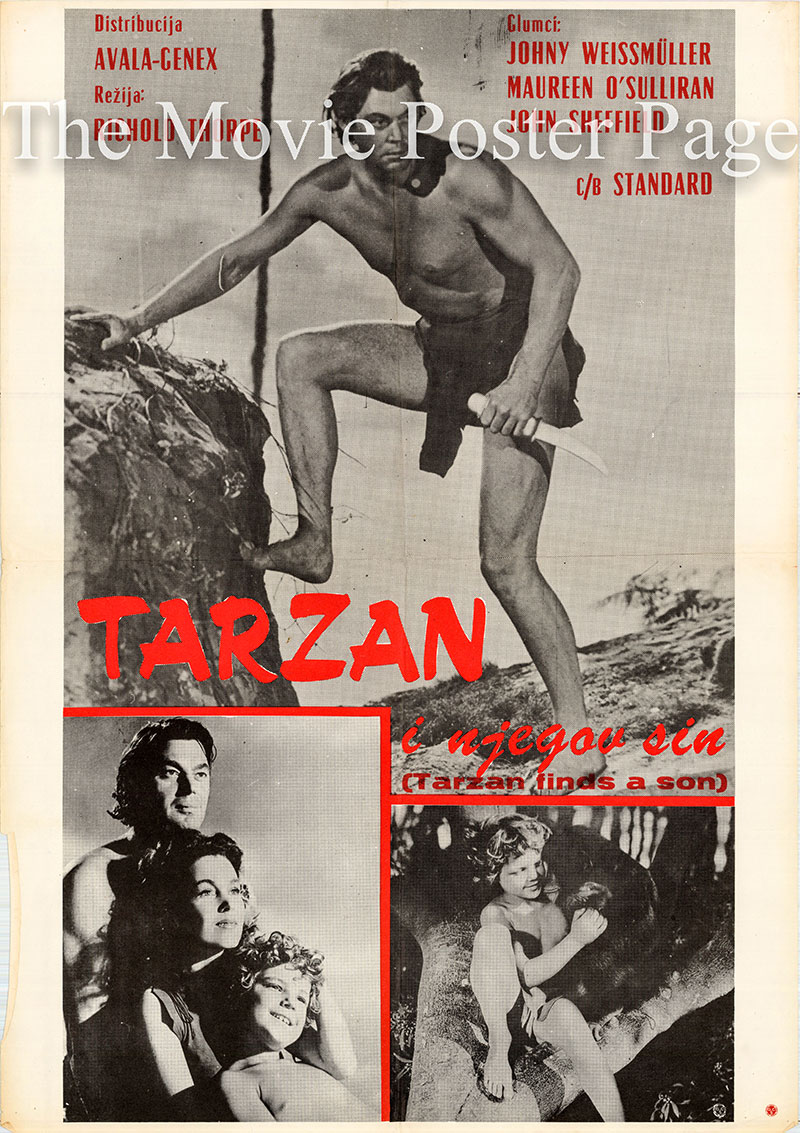 Pictured is a Yugoslavian poster for a 1970s rerelease of the 1939 Richard Thorpe film Tarzan Finds a Son starring Johnny Weissmuller as Tarzan.